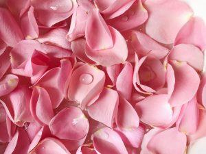 agua rosas